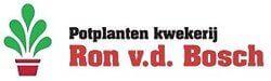 Potplanten Kwekerij Ron van den Bosch